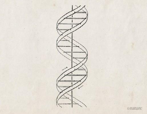 [사이언스N사피엔스] DNA의 이중나선 구조