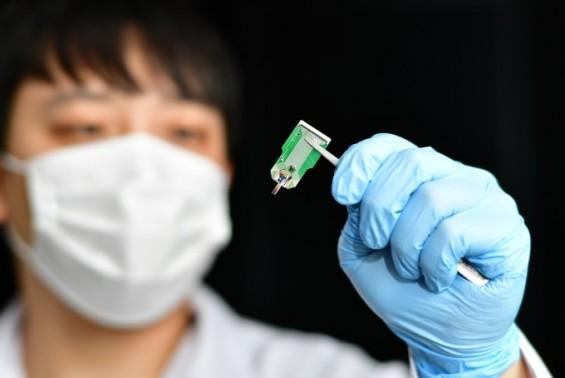 인공 뇌 신경회로 분석할 3D 전극시스템 나왔다