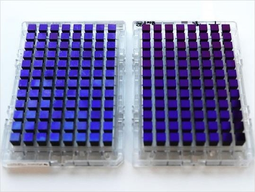 테라젠바이오, 질병청과 국민 유전체 빅데이터 구축한다