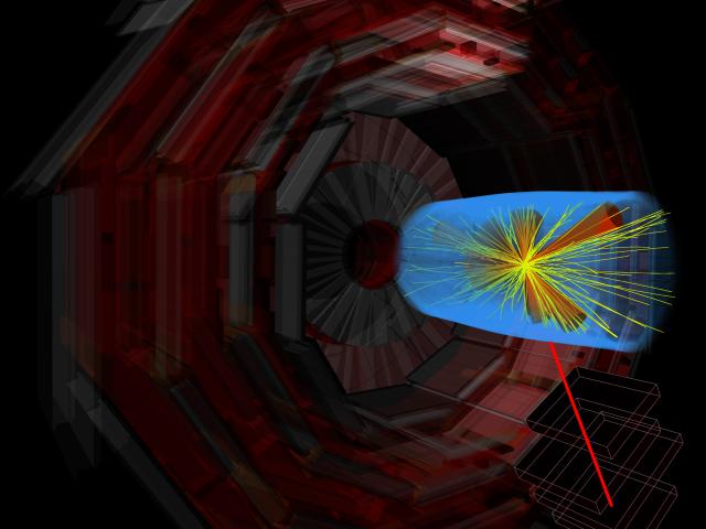 '빅뱅 머신' LHC, 10년 간 힉스 포함 59개 새 입자 발견…국내 중소기업 역할 톡톡