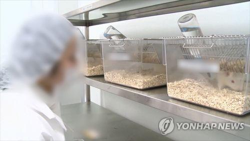 일본 연구팀, 대장에 소장 기능 부여 동물실험 성공