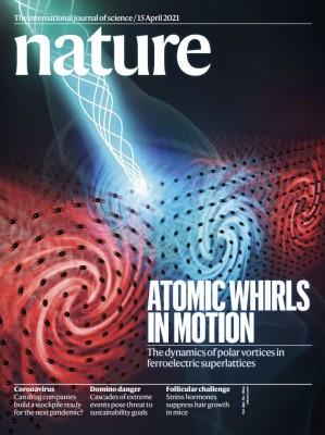 [표지로 읽는 과학] 미래 반도체 물질 '강유전체' 구조 특성 밝혔다