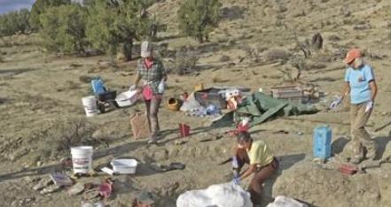티라노사우루스는 외롭지 않았다?…집단사냥설 뒷받침 연구나와