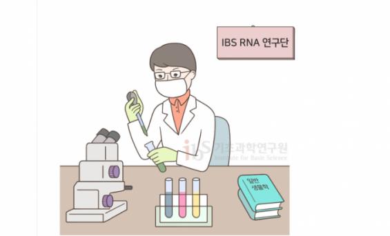 [IBS 코로나19 리포트 시즌2] 학부생 인턴, 코로나19 최전선의 연구실을 경험하다