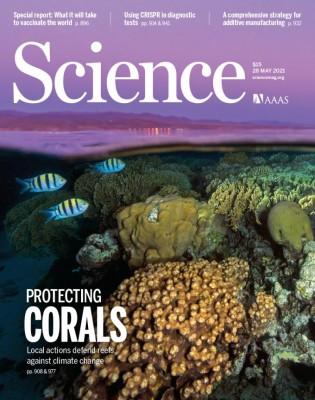 [표지로 읽는 과학]기후변화로부터 산호초 보호할 기회는 아직 남아있다