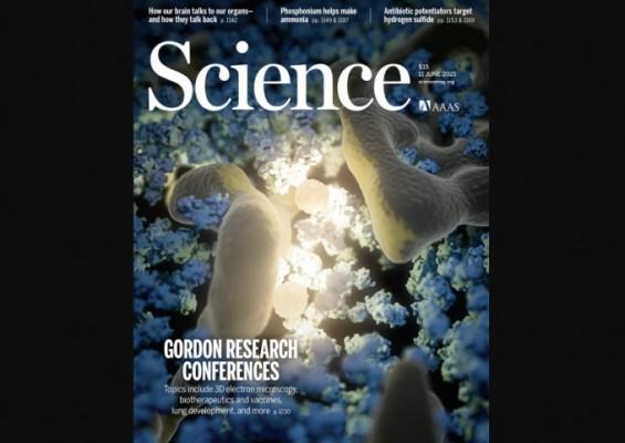 [표지로 읽는 과학] 과학계 다보스포럼 '고든 리서치 콘퍼런스' 가을에 열린다