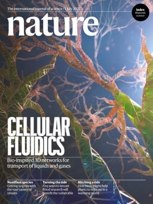 [표지로 읽는 과학] 중력 거스르는 식물의 모세관 현상을 모방하다