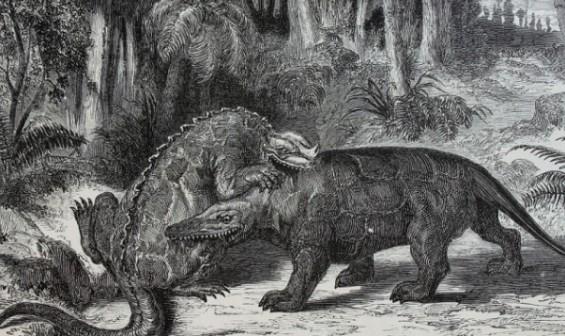 [잠깐과학] '공룡'이라는 이름 지은 리처드 오언