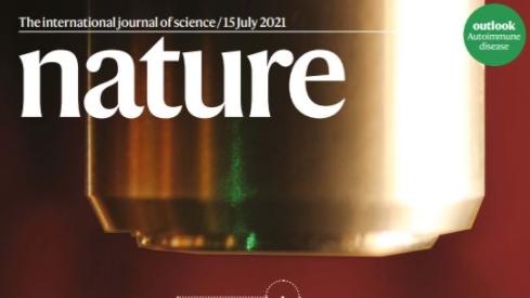 [표지로 읽는 과학] 측정하는 순간 상태 바뀌는 까다로운 양자, 빛으로 붙잡았다