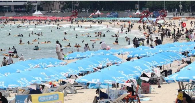 일요일인 7월 18일 부산 해운대해수욕장에서 피서객이 물놀이하거나 파라솔 아래에서 더위를 식히고 있다.  연합뉴스 제공