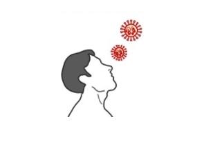 [IBS 코로나19 리포트 시즌2]콧속 섬모세포에서 복제·증식하는 코로나19 바이러스