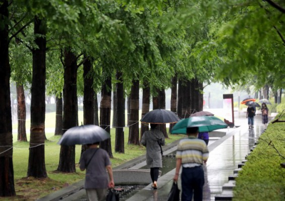 이번주 내내 전국에 비 소식…습도 높아 폭염·열대야 계속된다