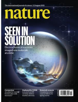 [표지로 읽는 과학] 액체 분자 하나까지 초고해상 촬영, 전기화학발광의 마술