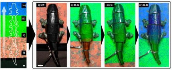 배경 따라 몸 색깔 바꾸는 카멜레온 로봇 국내서 개발