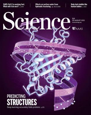 [표지로 읽는 과학]얽히고설킨 단백질 구조를 수 분만에 예측하다