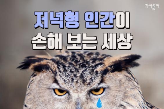 [카드뉴스] 저녁형 인간이 손해 보는 세상