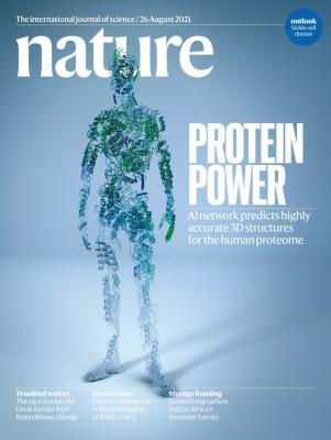 [표지로 읽는 과학]인간 단백질 전체로 분석 대상 넓히는 인공지능 3D구조 예측