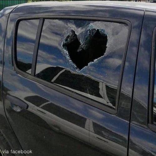 사랑고백인가 테러인가