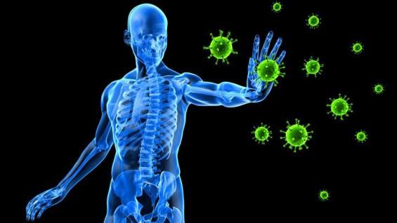 [강석기의 과학카페] 바이러스 감염이 자가면역질환을 일으킬까