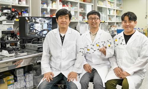 리튬금속전지용 고효율 리튬 저장기술 개발…국제학술지 게재