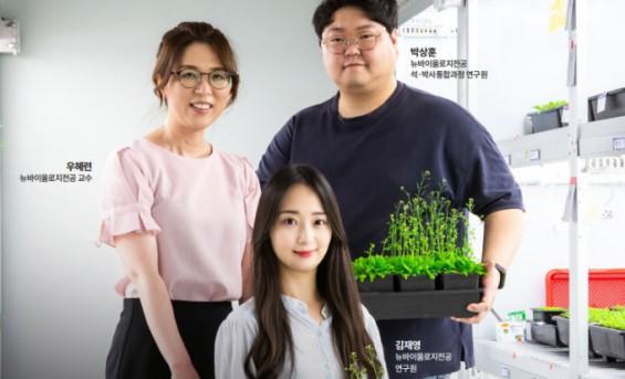 [인터뷰]식물에게 듣는 노화의 비밀