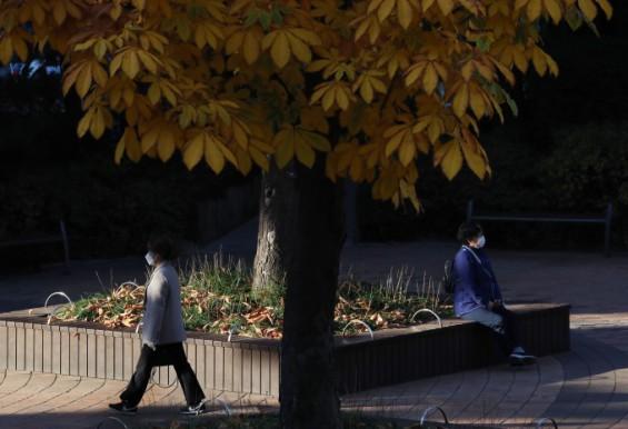 지구 온난화로 가을철 일교차 줄고 있다