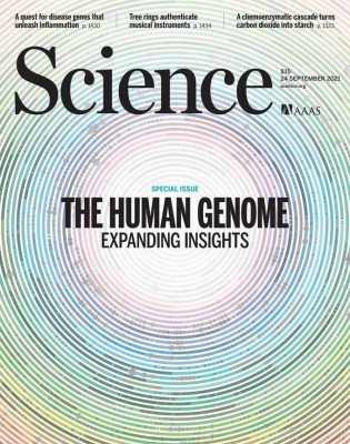 [표지로 읽는 과학] 점점 밝혀지는 인간 게놈, 새로운 치료 시대 열릴까
