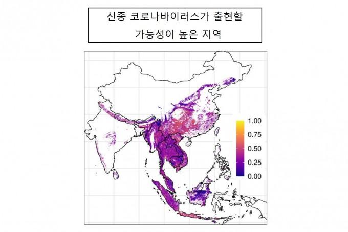 미국 비영리연구단체 에코헬스얼라이언스와 듀크-싱가포르대 의대 공동 연구팀은 신종 코로나바이러스가 출현할 위험이 높은 지역에 대한 지도를 만들었다. 사스, 코로나19와 유전적으로 비슷한 바이러스를 가진 박쥐 23종가 많이 살고 있는 지역, 인구 수가 많고, 사람과 박쥐간 접촉 빈도가 높은 곳 등 데이터를 결합한 결과다. 중국 남서부 일부와 미얀마 북동부, 태국, 라오스, 베트남 북부, 말레이시아, 인도네시아로 나타났다. 지도에서 색깔이 노란색, 붉은색과 가까울수록 위험도가 크다는 뜻이다. 메드아카이브 제공