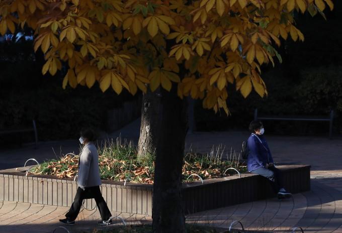2011년부터 지난해까지 최근 10년 간 가을철 일교차가 1990년대에 비해 0.9도 감소한 것으로 나타났다. 연합뉴스 제공