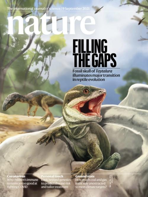 국제학술지 네이처는 히카르도 마르티네즈 아르헨티나 산후안국립대 자연과학연구소 척추동물및고생물학 책임자 연구팀이 연구한 고대 도마뱀을 상상해 9일 표지에 담았다. 이 고대 도마뱀은 중생대에서 가장 오래된 시대인 트라이아스기에 살았을 것으로 추정된다.네이처 제공
