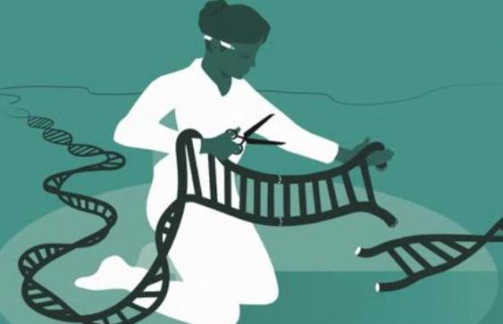 생명의 암호 교정하는 도구 만든 여성화학자 2명 올해 노벨화학상