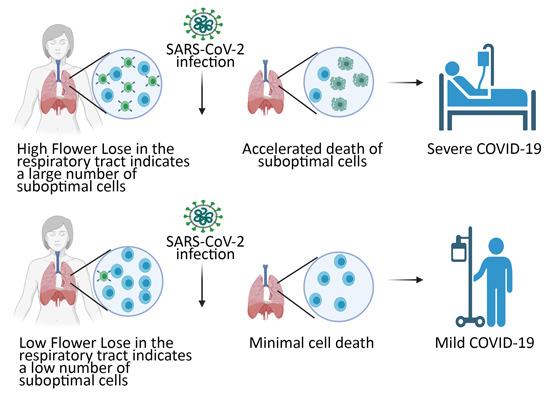 코로나19 확진자의 위증중 여부 예측하는 단백질 발견